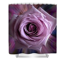 Purple Rose Shower Curtain by Thomas Woolworth