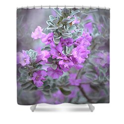 Purple Sage Shower Curtain
