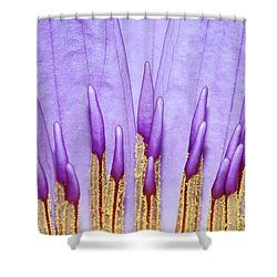Purple Spires Shower Curtain by Judy Whitton