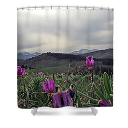 Shower Curtain featuring the digital art Purple Spring In The Big Horns by Cathy Anderson
