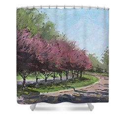 Purple Trees  Shower Curtain by Ylli Haruni