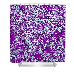 Purple Turquoise Shower Curtain