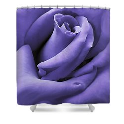 Purple Velvet Rose Flower Shower Curtain