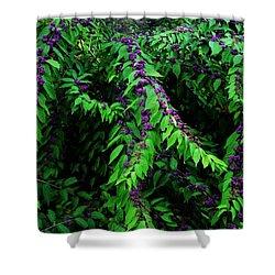 Purple Vibe Shower Curtain by Deborah  Crew-Johnson