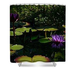 Purplette Shower Curtain by Doug Norkum