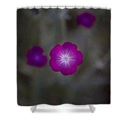 Purplish  Shower Curtain