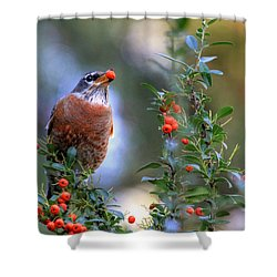Pyracantha Dreams Shower Curtain