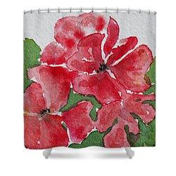 Pzzzazz Shower Curtain