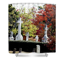 Shower Curtain featuring the photograph Quad Crosses In Fall by Lesa Fine