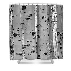 Quaking Aspen Zion National Park Shower Curtain