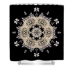 Queen Anne's Lace Flower Mandala Shower Curtain by David J Bookbinder