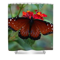 Queen Butterfly Shower Curtain