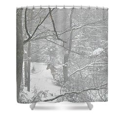 Querida In The Snow Storm Shower Curtain by Patricia Keller