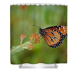 Quick Pose Shower Curtain
