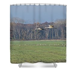 Quidditch Shower Curtain