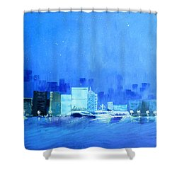 Quiet City Night Shower Curtain