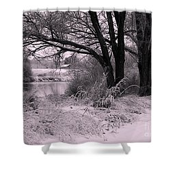 Quiet Morning After Snowfall Shower Curtain by Carol Groenen