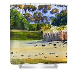 Shower Curtain featuring the painting Quiet Sand By The Creek by Pamela  Meredith