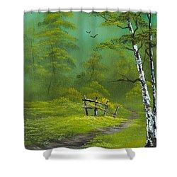 Quiet Trail Shower Curtain by C Steele
