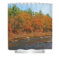 Quinapoxet River In Autumn Shower Curtain