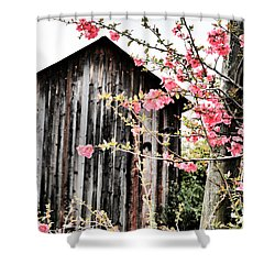 Quince Dreams Shower Curtain