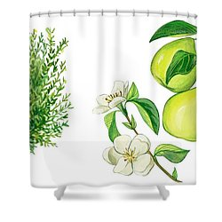 Quince Tree Shower Curtain by Anonymous