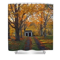 Shower Curtain featuring the photograph Quivet Morning by Dianne Cowen