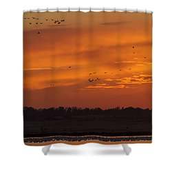 Quivira Sunset 1 Shower Curtain by Rob Graham