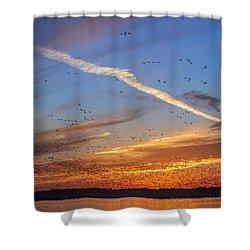 Quivira Sunset 2 Shower Curtain by Rob Graham