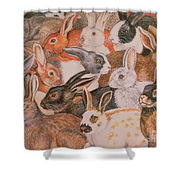 Rabbit Spread Shower Curtain by Ditz