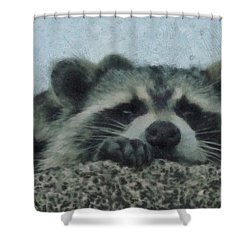 Raccoons Painterly Shower Curtain by Ernie Echols