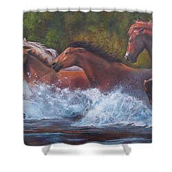Race For Freedom Shower Curtain by Karen Kennedy Chatham