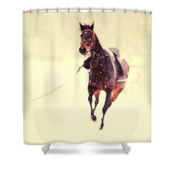Race In The Snow Shower Curtain by Jenny Rainbow