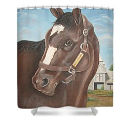 Rachel Alexandra At Stonestreet Farms Shower Curtain by Patrice Torrillo