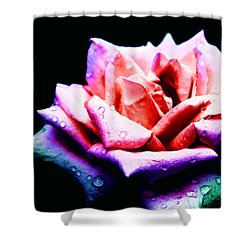 Shower Curtain featuring the photograph Rachel's Rose by Rachel Mirror