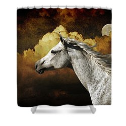 Racing The Moon Shower Curtain