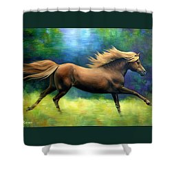 Racing  The Wind Shower Curtain