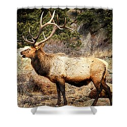 Rack Of Elk Shower Curtain by Juli Ellen