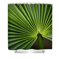 Radial Greens Shower Curtain