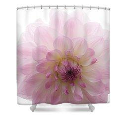Radiant Bloom Shower Curtain