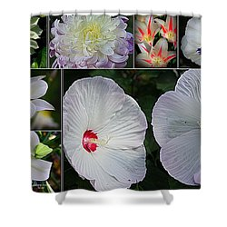 Radiant In White Shower Curtain by Dora Sofia Caputo Photographic Art and Design