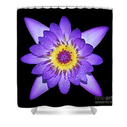 Radiant Shower Curtain by Judy Whitton