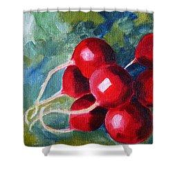 Radish Shower Curtain by Nancy Merkle
