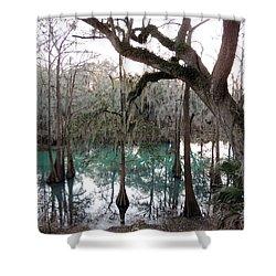 Radium Springs Creek Shower Curtain by Kim Pate