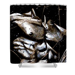 Rafael - Study No. 1 Shower Curtain
