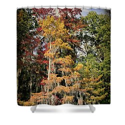 Raggedy Bayou Shower Curtain