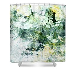 Ragtime Abstract  Art  Shower Curtain