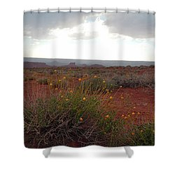 Rain At Monument Valley Shower Curtain by Heather Coen