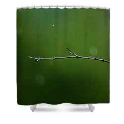 Rain Bokeh Shower Curtain by Shelby  Young