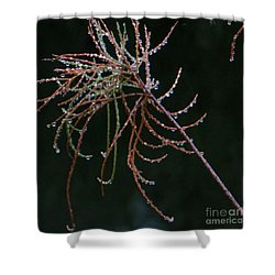 Rain Catchers Shower Curtain